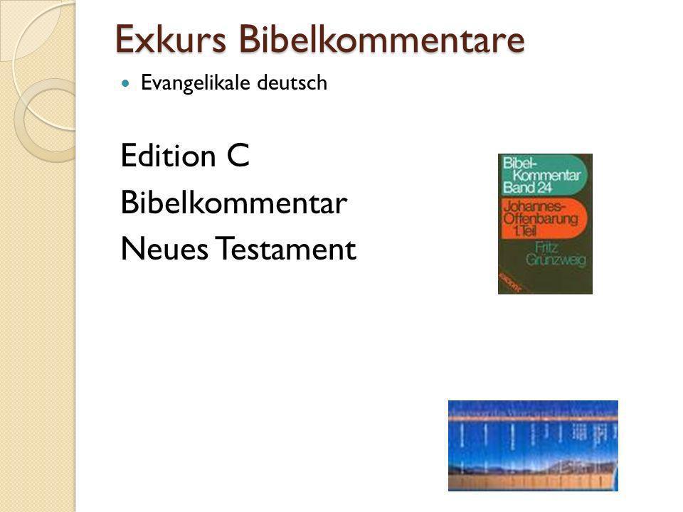 Exkurs Bibelkommentare