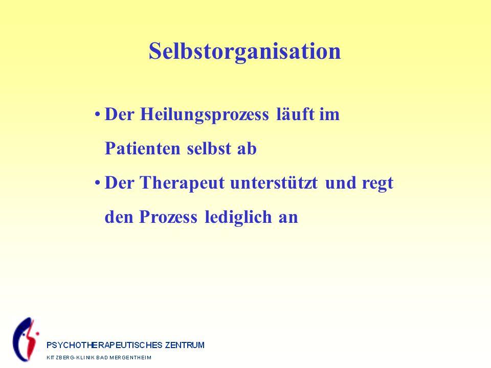 Selbstorganisation Der Heilungsprozess läuft im Patienten selbst ab