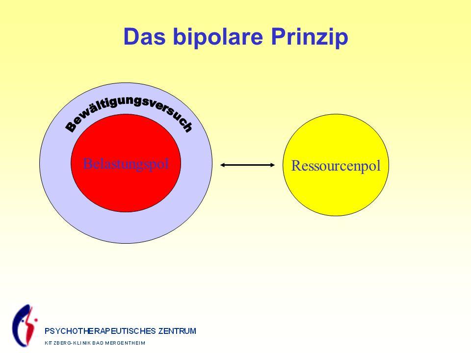 Das bipolare Prinzip Bewältigungsversuch Belastungspol Ressourcenpol