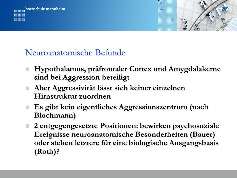 Neuroanatomische Befunde