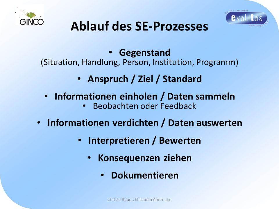 Ablauf des SE-Prozesses
