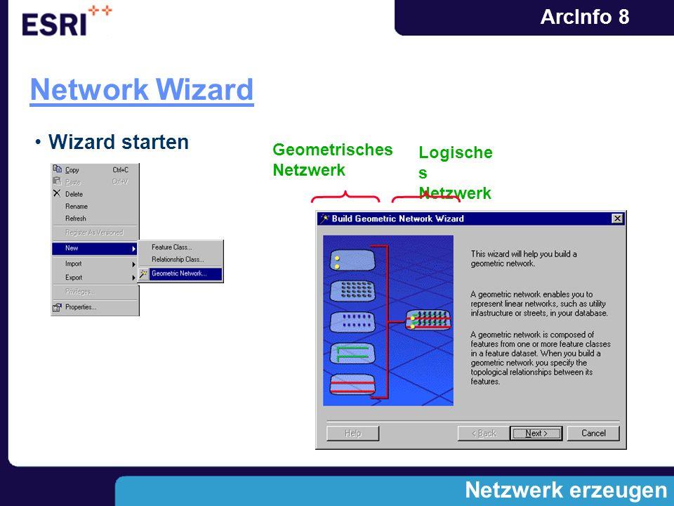 Network Wizard Netzwerk erzeugen Wizard starten Geometrisches Netzwerk