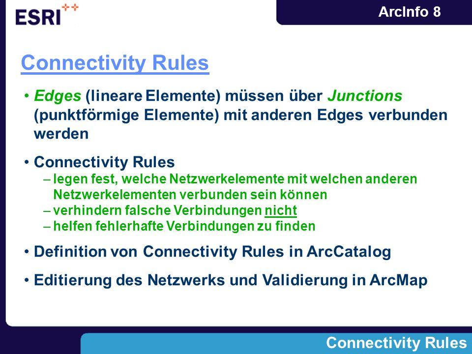 Connectivity Rules Edges (lineare Elemente) müssen über Junctions (punktförmige Elemente) mit anderen Edges verbunden werden.