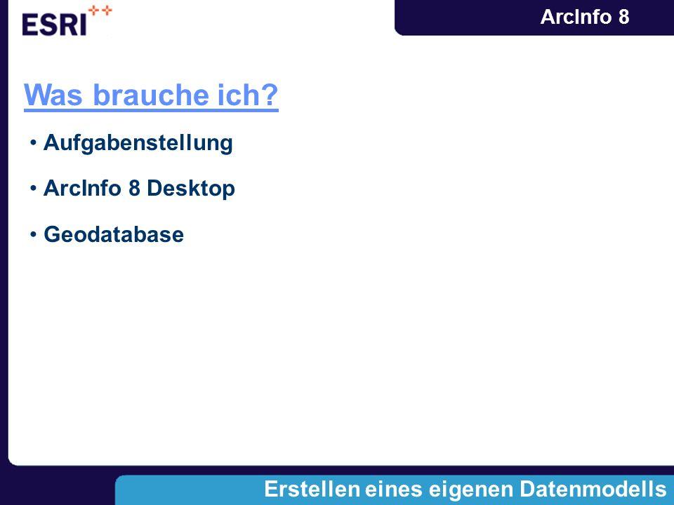 Was brauche ich Aufgabenstellung ArcInfo 8 Desktop Geodatabase
