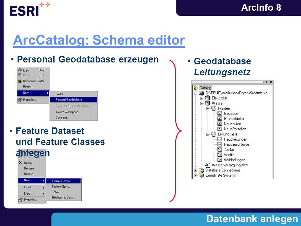ArcCatalog: Schema editor