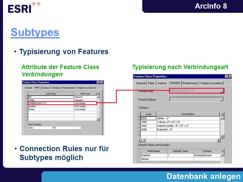 Subtypes Datenbank anlegen Typisierung von Features
