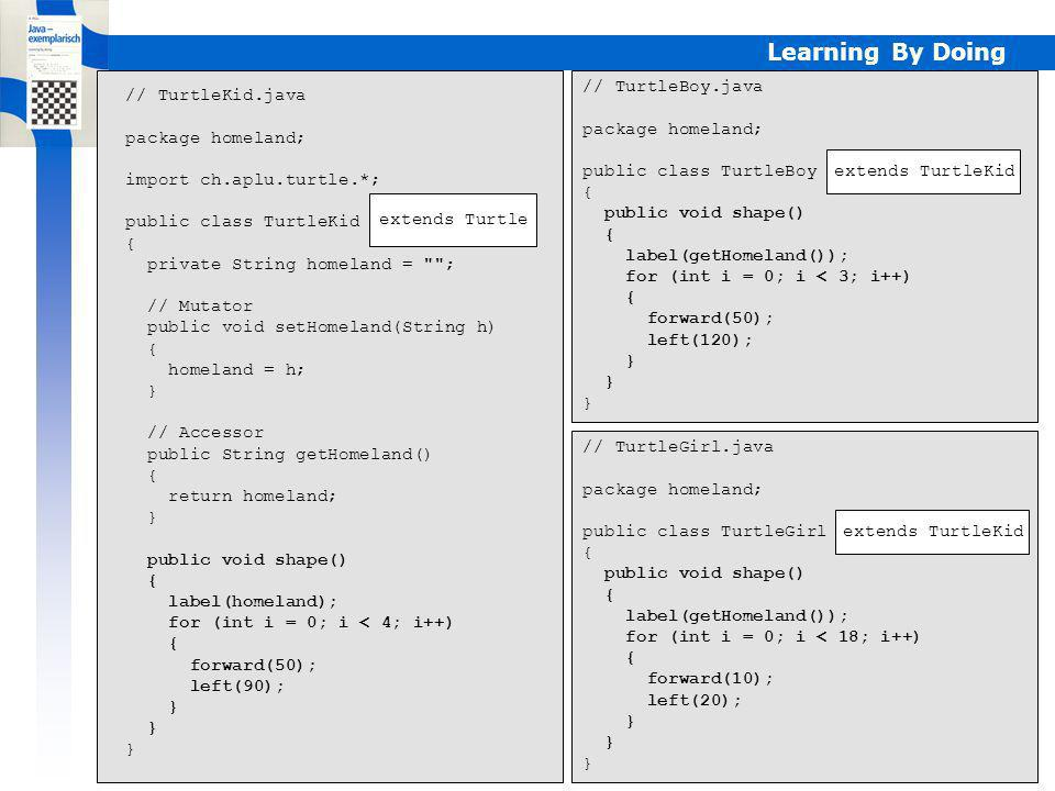 Learning By Doing // TurtleKid.java package homeland;