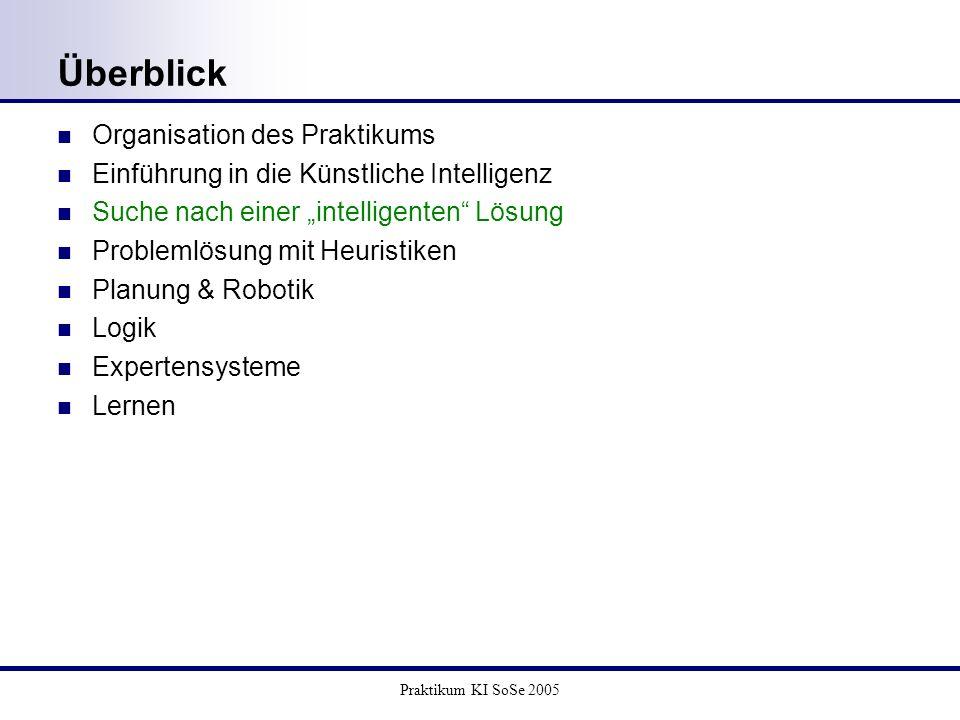 Überblick Organisation des Praktikums