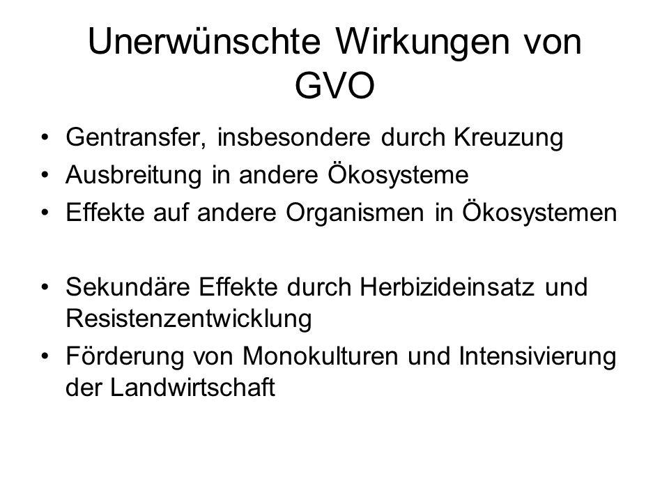 Unerwünschte Wirkungen von GVO