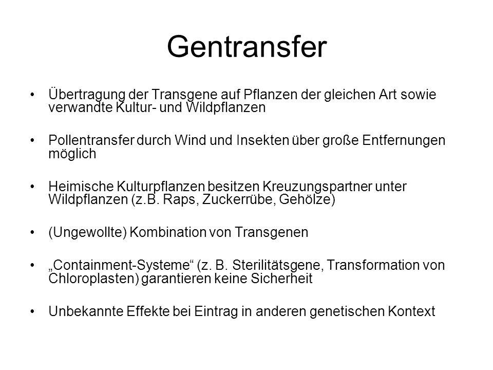 Gentransfer Übertragung der Transgene auf Pflanzen der gleichen Art sowie verwandte Kultur- und Wildpflanzen.
