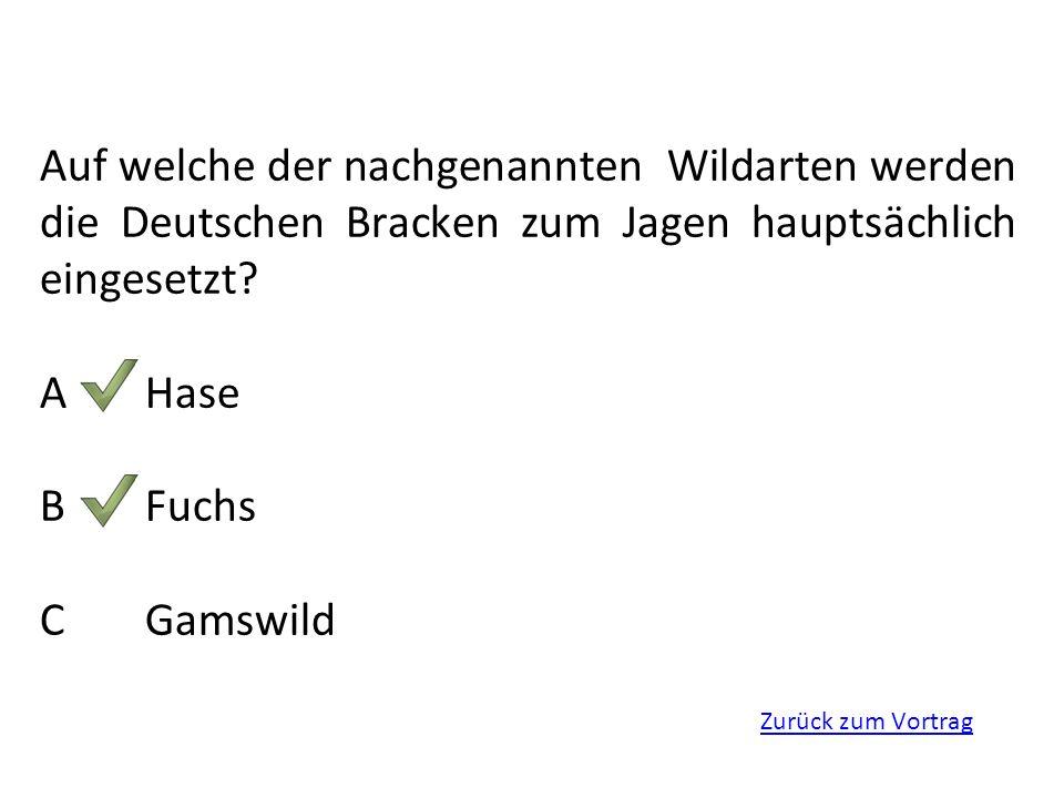 Auf welche der nachgenannten Wildarten werden die Deutschen Bracken zum Jagen hauptsächlich eingesetzt