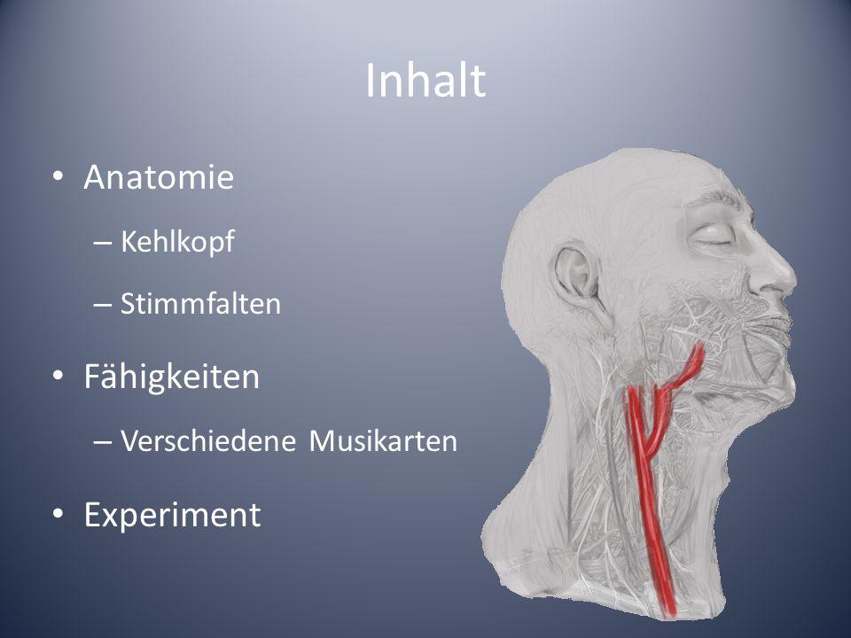 Inhalt Anatomie Fähigkeiten Experiment Kehlkopf Stimmfalten