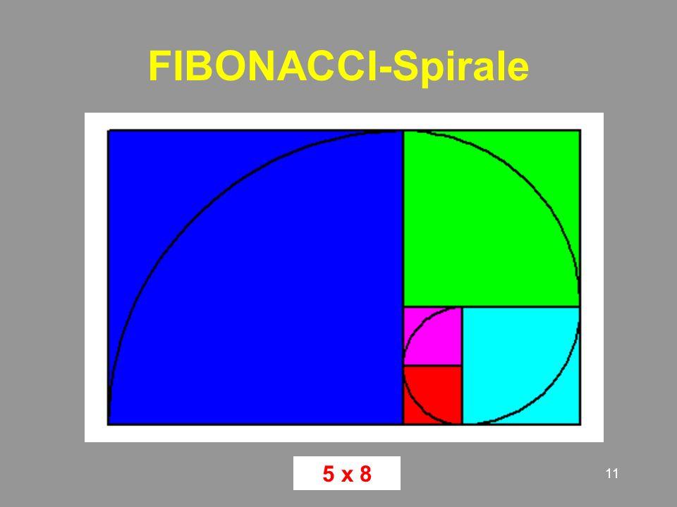 FIBONACCI-Spirale 5 x 8