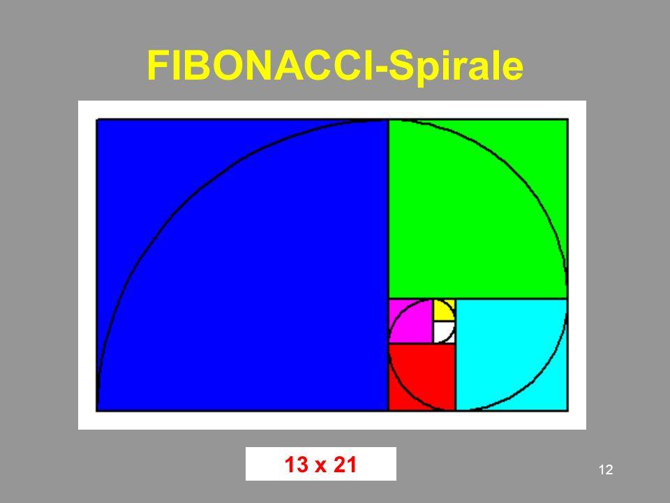 FIBONACCI-Spirale 13 x 21