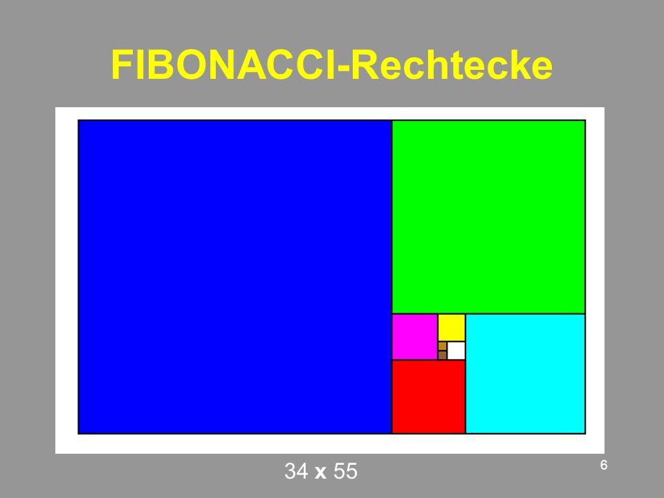 FIBONACCI-Rechtecke 34 x 55