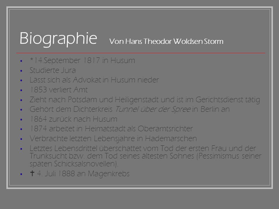 Biographie Von Hans Theodor Woldsen Storm