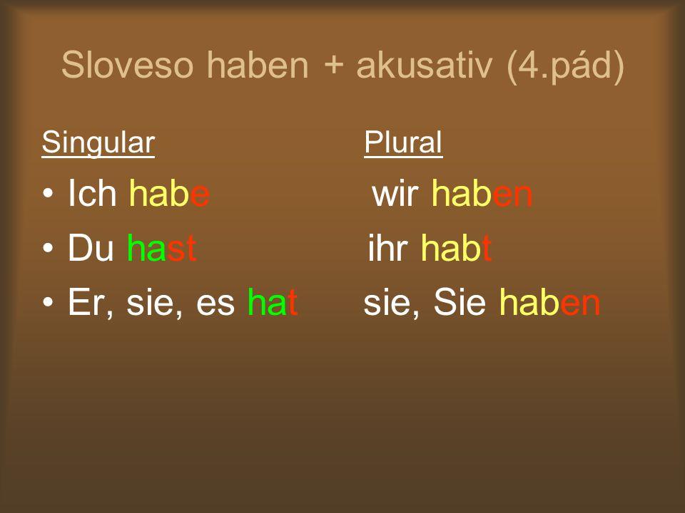 Sloveso haben + akusativ (4.pád)
