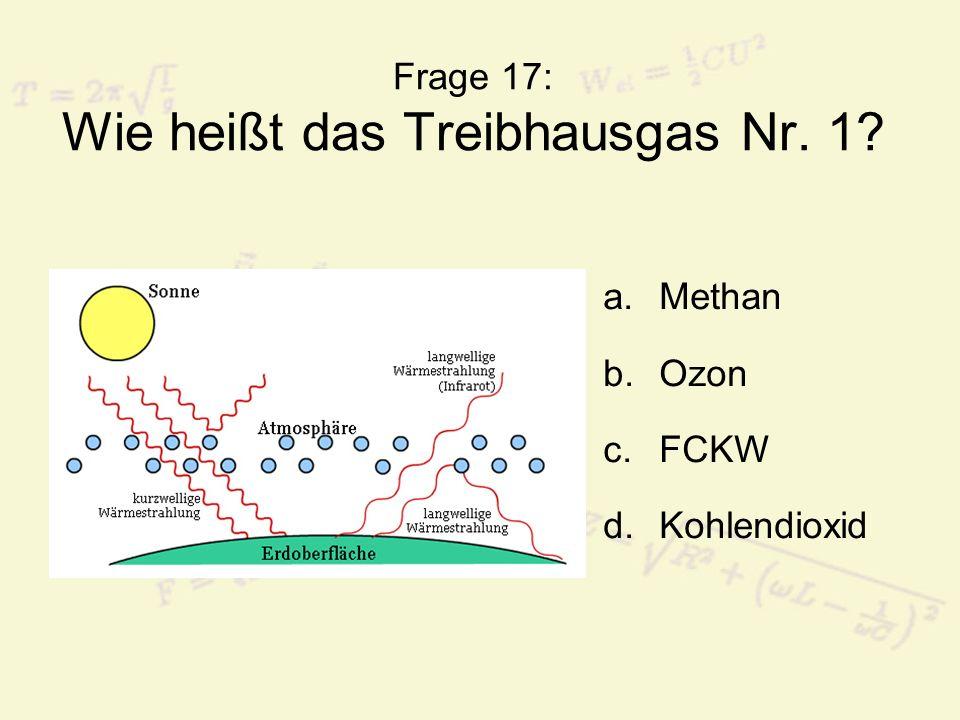 Frage 17: Wie heißt das Treibhausgas Nr. 1