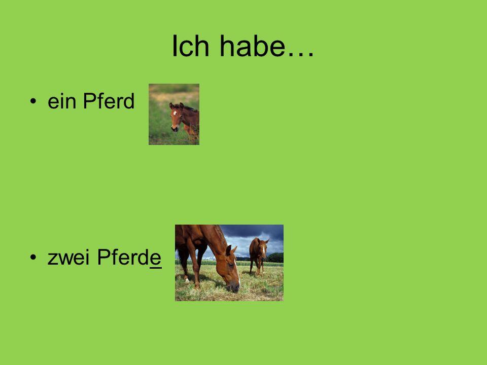 Ich habe… ein Pferd zwei Pferde