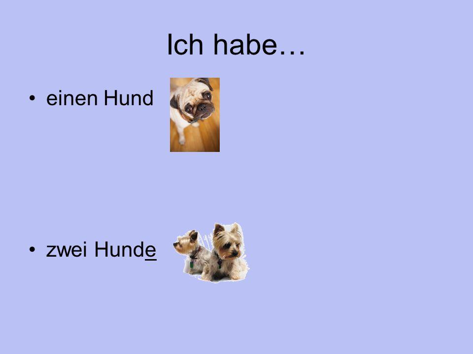 Ich habe… einen Hund zwei Hunde