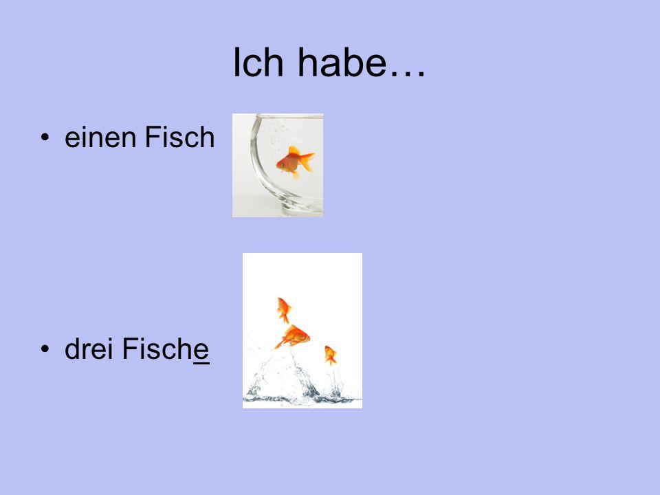 Ich habe… einen Fisch drei Fische