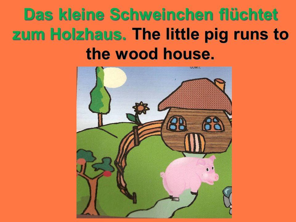 Das kleine Schweinchen flüchtet zum Holzhaus