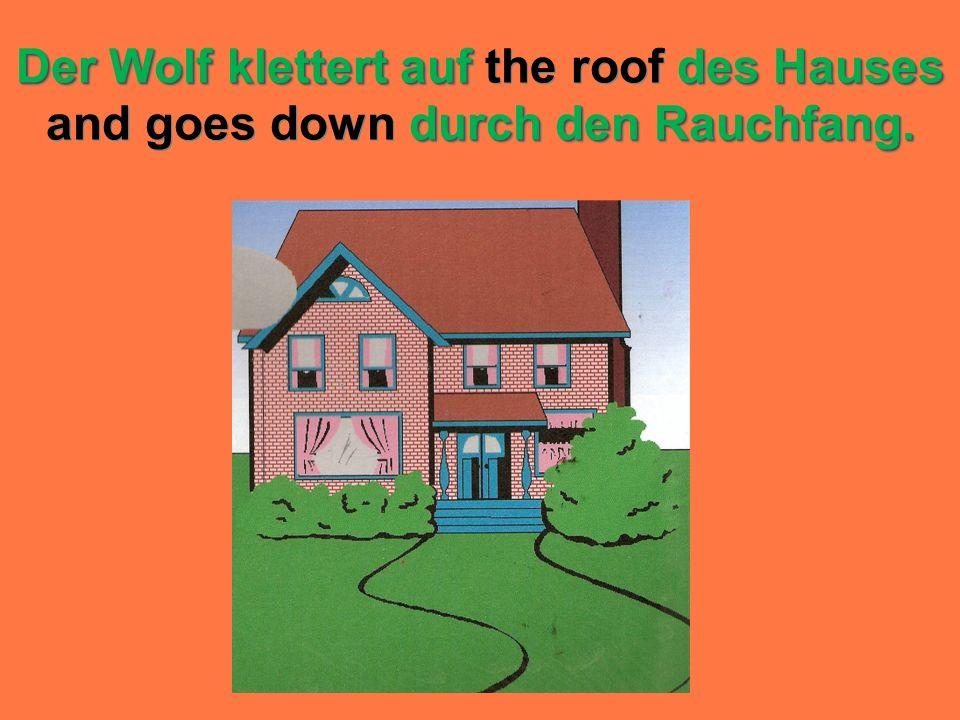 Der Wolf klettert auf the roof des Hauses and goes down durch den Rauchfang.