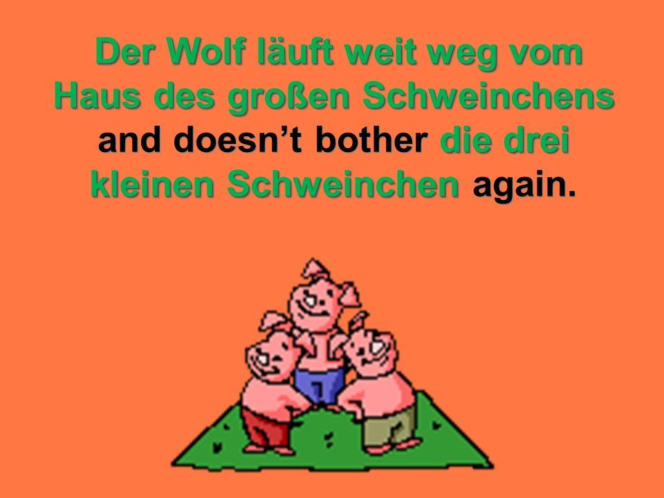 Der Wolf läuft weit weg vom Haus des großen Schweinchens and doesn't bother die drei kleinen Schweinchen again.