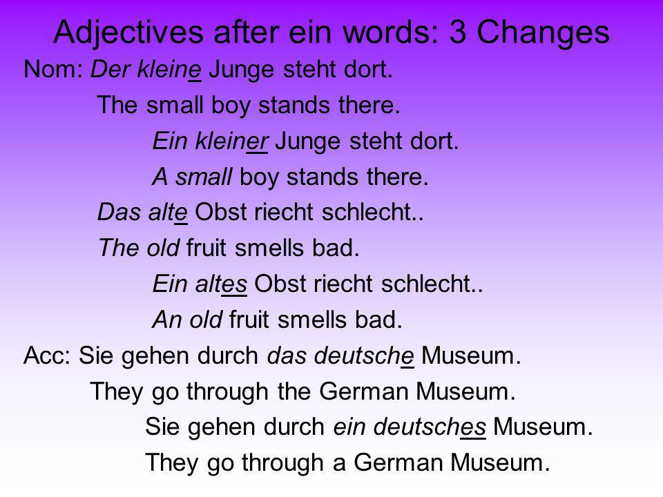 Adjectives after ein words: 3 Changes