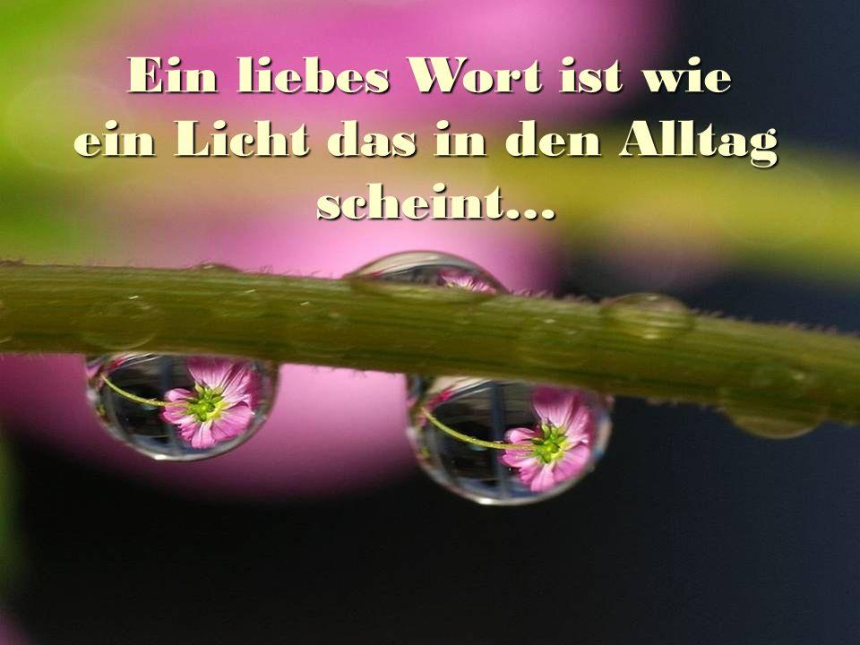 Ein liebes Wort ist wie ein Licht das in den Alltag scheint…