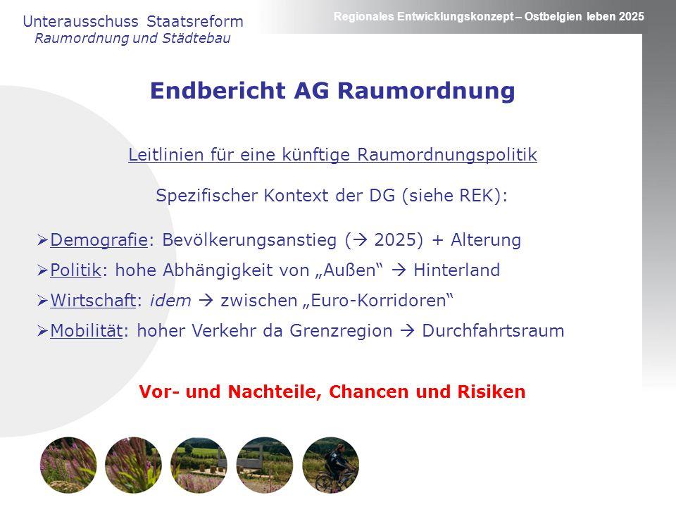 Endbericht AG Raumordnung Vor- und Nachteile, Chancen und Risiken