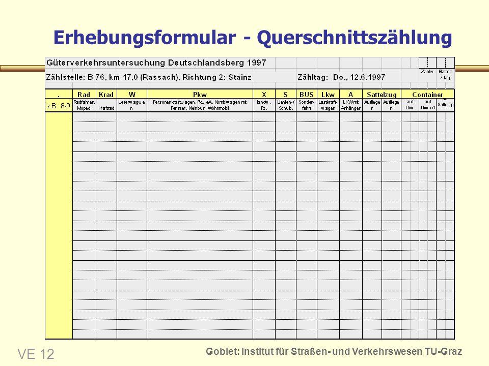 Erhebungsformular - Querschnittszählung