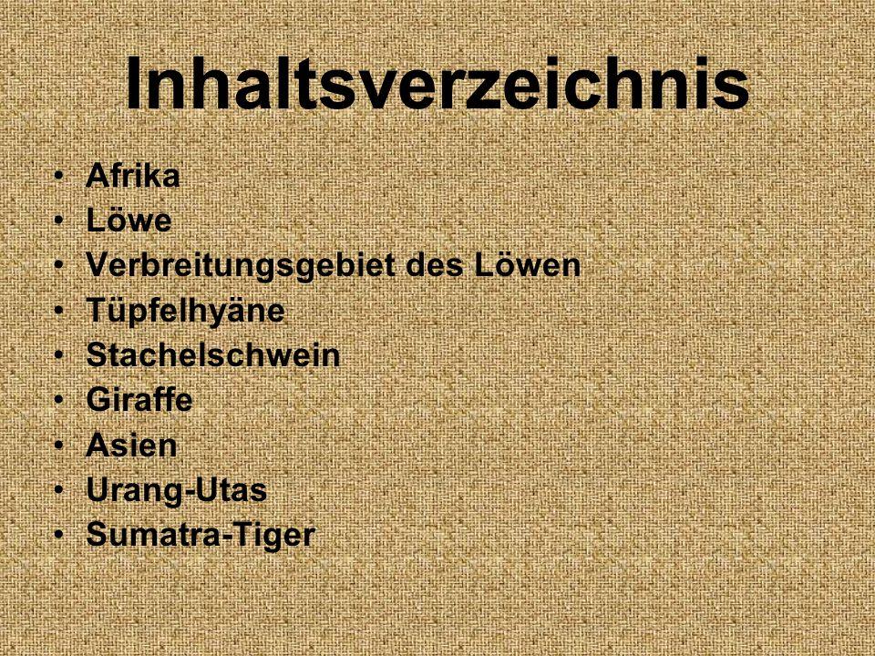 Inhaltsverzeichnis Afrika Löwe Verbreitungsgebiet des Löwen
