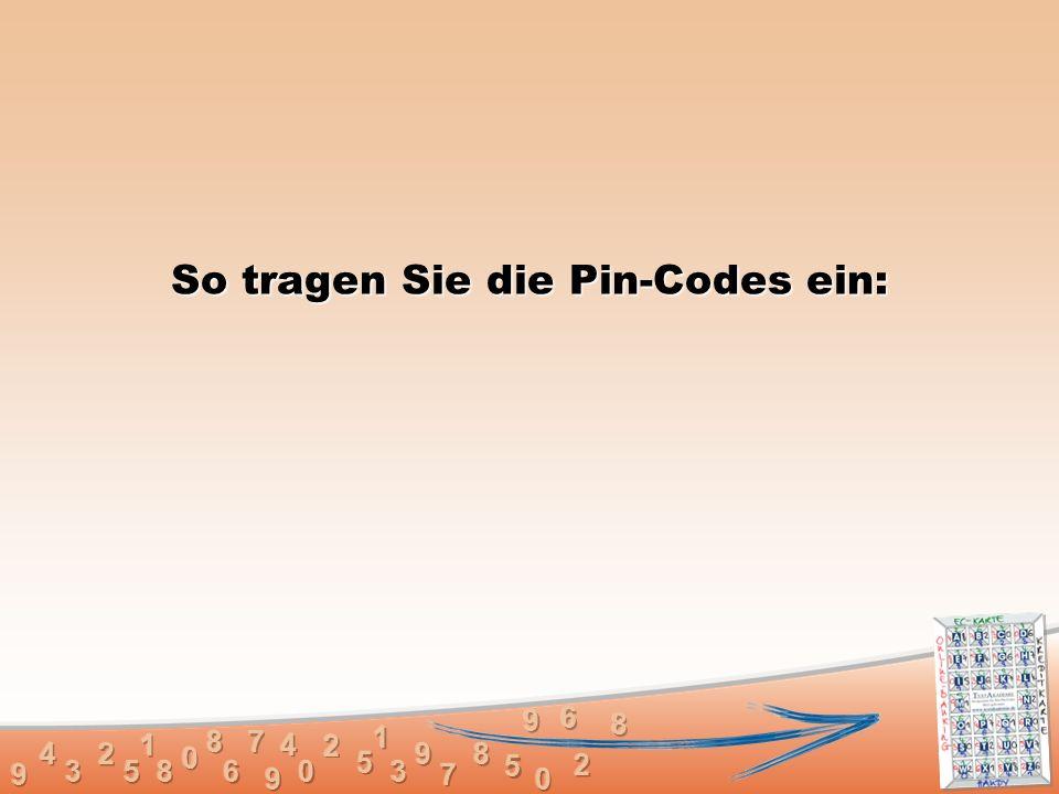 So tragen Sie die Pin-Codes ein: