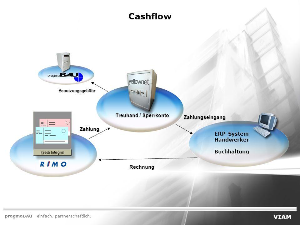 Cashflow VIAM Treuhand / Sperrkonto Zahlungseingang Zahlung ERP-System