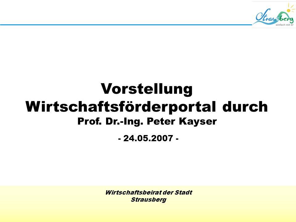 Vorstellung Wirtschaftsförderportal durch Prof. Dr.-Ing. Peter Kayser