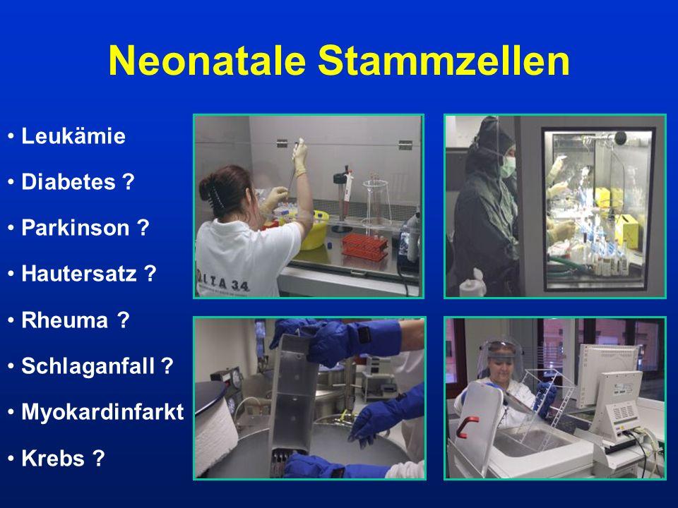 Neonatale Stammzellen