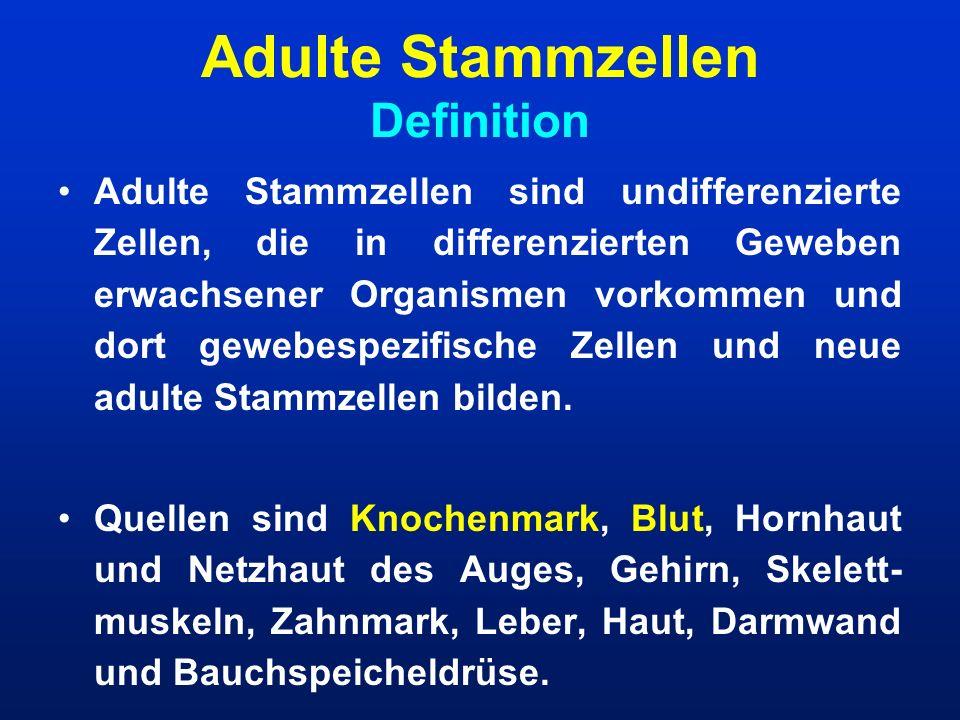 Adulte Stammzellen Definition