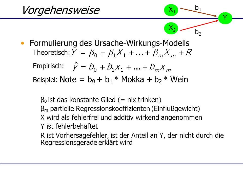 Vorgehensweise Formulierung des Ursache-Wirkungs-Modells b1 X1 Y X2 b2