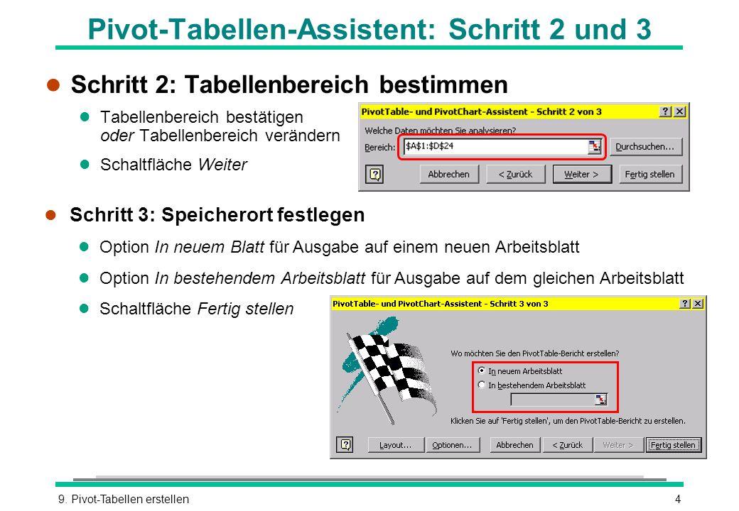 Pivot-Tabellen-Assistent: Schritt 2 und 3
