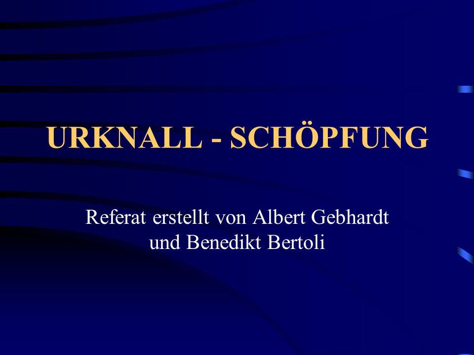 Referat erstellt von Albert Gebhardt und Benedikt Bertoli