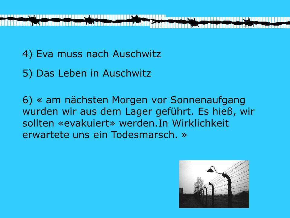 4) Eva muss nach Auschwitz
