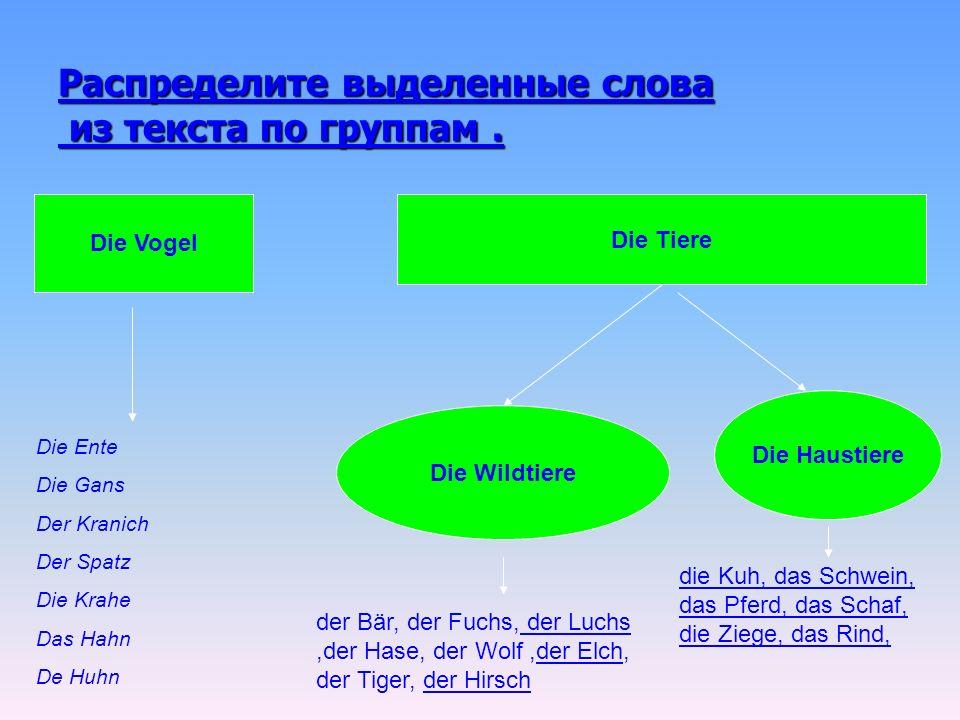 Распределите выделенные слова из текста по группам .