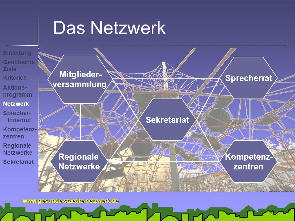 Das Netzwerk Mitglieder- versammlung Sprecherrat Sekretariat Regionale