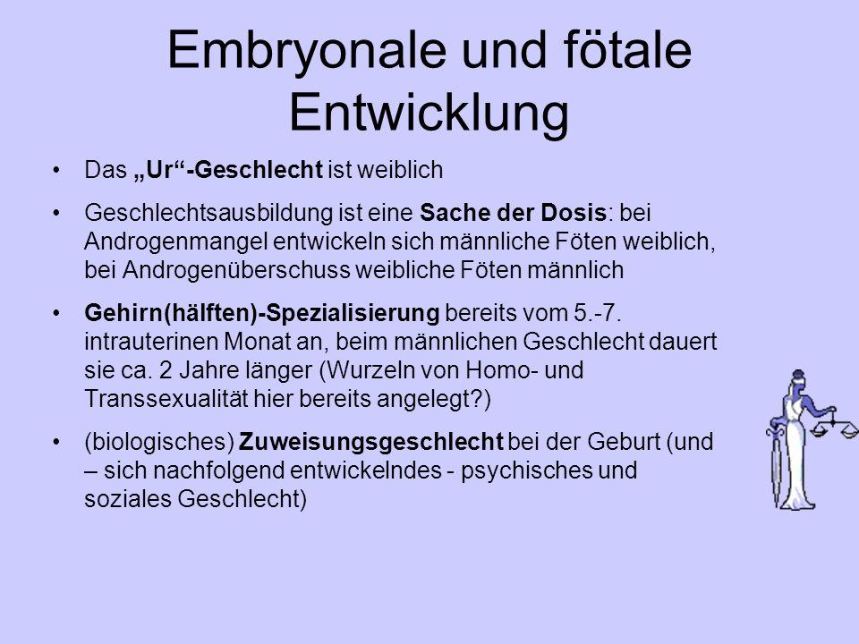 Embryonale und fötale Entwicklung