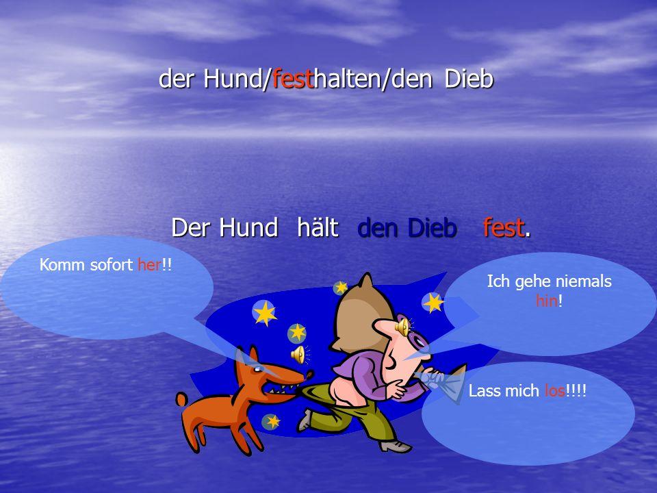 der Hund/festhalten/den Dieb