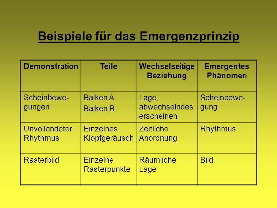 Beispiele für das Emergenzprinzip
