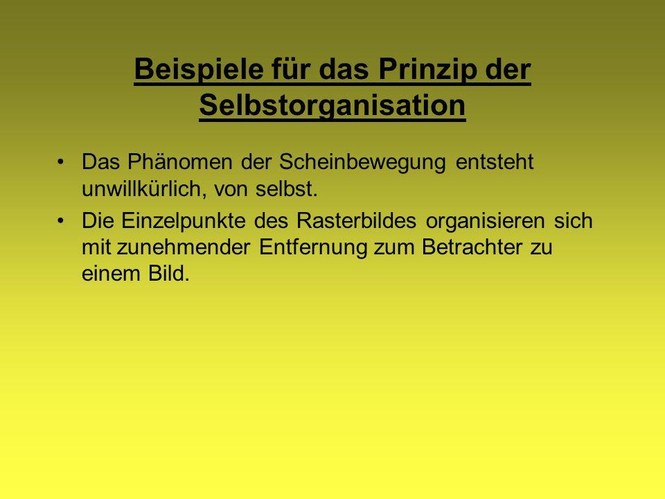 Beispiele für das Prinzip der Selbstorganisation