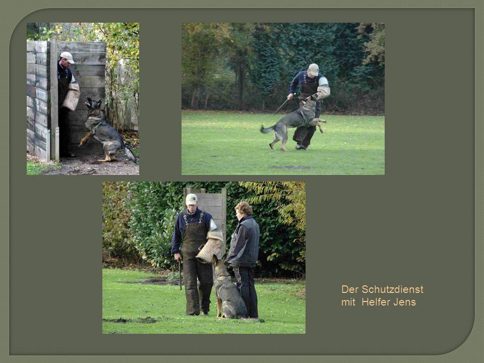 Der Schutzdienst mit Helfer Jens