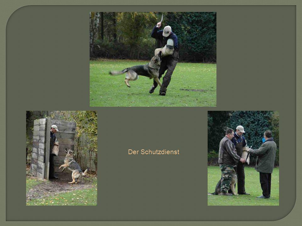 Der Schutzdienst
